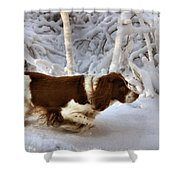 Leading The Way Shower Curtain by Kristin Elmquist