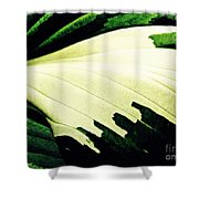 Leaf Abstract 7 Shower Curtain by Sarah Loft