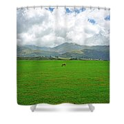 Leg Room  Shower Curtain by Kevin Smith