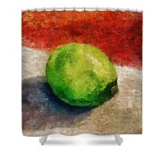 Lime Still Life Shower Curtain by Michelle Calkins