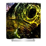 Limelight Shower Curtain by Will Borden