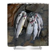 Limit Shower Curtain by Randy Bodkins