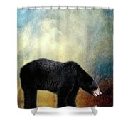 Little Boy Lost Shower Curtain by Lois Bryan