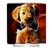 Little Puppy In Love Shower Curtain by Pamela Johnson