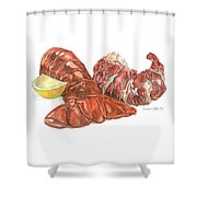 Lobster Tail And Meat Shower Curtain by Dominic White