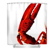 Lobster - The Left Side Shower Curtain by Sharon Cummings