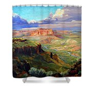 Look Out At White Rock Shower Curtain by Nancy Paris Pruden