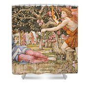 Love And The Maiden Shower Curtain by JRS Stanhope
