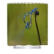 Love Dance.. Shower Curtain by Nina Stavlund