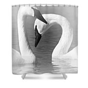 Love In Black And White Shower Curtain by Larry Ricker