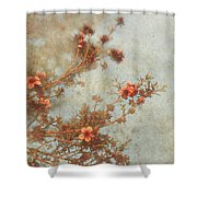 Love Is In Bloom Shower Curtain by Laurie Search