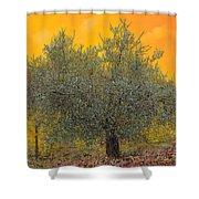 L'ulivo Tra Le Vigne Shower Curtain by Guido Borelli