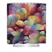 Luminosity Shower Curtain by Deborah Ronglien