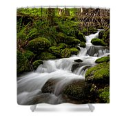 Lush Stream Shower Curtain by Mike Reid