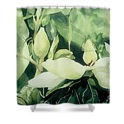 Magnolium Opus Shower Curtain by Elizabeth Carr