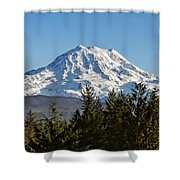 Majestic Shower Curtain by Kelley King