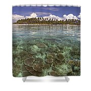 Malaysia, Mabul Island Shower Curtain by Dave Fleetham - Printscapes