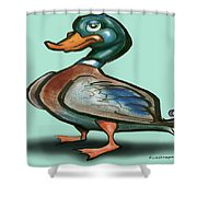 Mallard Duck Shower Curtain by Kevin Middleton