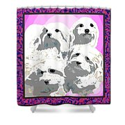 Maltese Group Shower Curtain by Kathleen Sepulveda