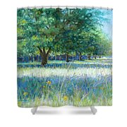 Mama's Day Shower Curtain by Susan Jenkins