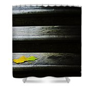 Maple Leaf On Step Shower Curtain by Avalon Fine Art Photography