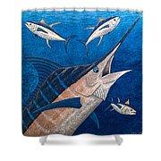 Marlin And Ahi Shower Curtain by Carol Lynne