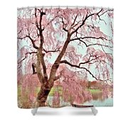Meet Me Under The Pink Blooms Beside The Pond - Holmdel Park Shower Curtain by Angie Tirado