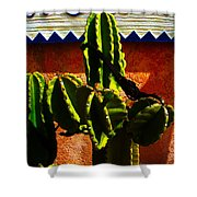 Mexican Style  Shower Curtain by Susanne Van Hulst