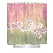 Mirage Shower Curtain by Don  Wright