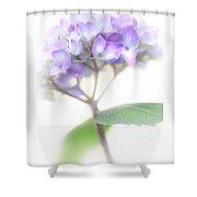 Misty Hydrangea Flower Shower Curtain by Jennie Marie Schell
