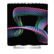 Mobius Shower Curtain by John Edwards