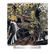 Mocking Birds And Rattlesnake Shower Curtain by John James Audubon