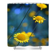 Momentum 04a Shower Curtain by Variance Collections