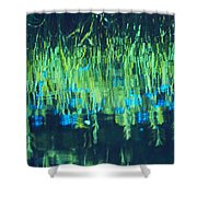 Monetta Shower Curtain by Aimelle