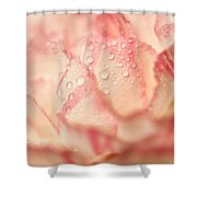 Moning Freshness. Natural Watercolor. Touch Of Japanese Style Shower Curtain by Jenny Rainbow