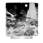 Moon Over Stanley Park Shower Curtain by Will Borden