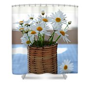 Morning Daisies Shower Curtain by Elena Elisseeva