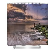 Morning Glory Shower Curtain by Evelina Kremsdorf