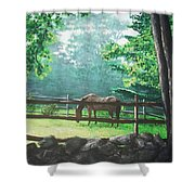 Morning Pasture Shower Curtain by Jack Skinner