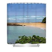 Morning Walk Shower Curtain by Jon Burch Photography