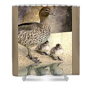 Mother Of Twins Shower Curtain by Holly Kempe