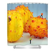 Mountain Climber On Mangosteens Shower Curtain by Paul Ge