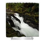 Mountain Stream Shower Curtain by Mike Reid