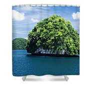 Mushroom-shaped Island Shower Curtain by Dave Fleetham - Printscapes