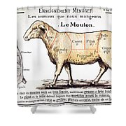 Mutton Shower Curtain by French School