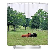 My Own True Love Shower Curtain by Jan Amiss Photography