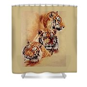 Nanook Shower Curtain by Barbara Keith