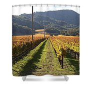 Napa Valley Vineyard . 7d9020 Shower Curtain by Wingsdomain Art and Photography