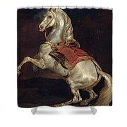 Napoleon's Stallion Tamerlan Shower Curtain by Theodore Gericault