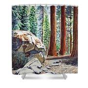 National Park Sequoia Shower Curtain by Irina Sztukowski